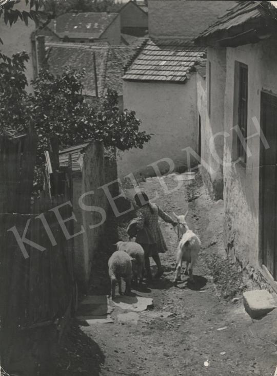 Eladó  Szőllősy Kálmán - Öreg falu fiatal kecskével, 1950 körül festménye