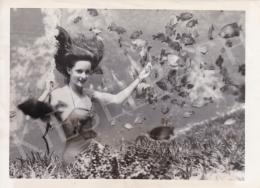 International News Photos - Egy sellő és az állatai (Frances Dwight halakat etet), 1951
