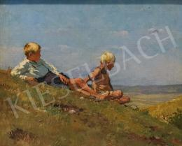 Mérő, István - Boys on the Hillside