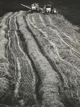 György Gebhardt - Harvest