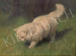 Heyer Artur - Fehér cica katicával