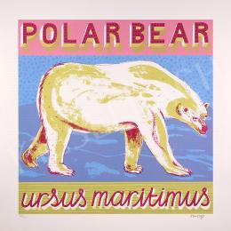 Alice Pattulo - Polar Bear (2015)