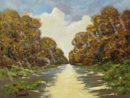 Jaszusch, Antal (Jasszus Antal) - Sunlit Road in the Autumn Forest