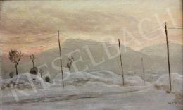 Molnár C. Pál - Téli táj póznákkal