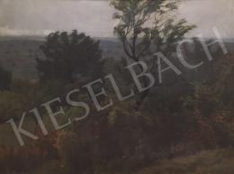 Barkász Lajos - Budai dombok, 1943