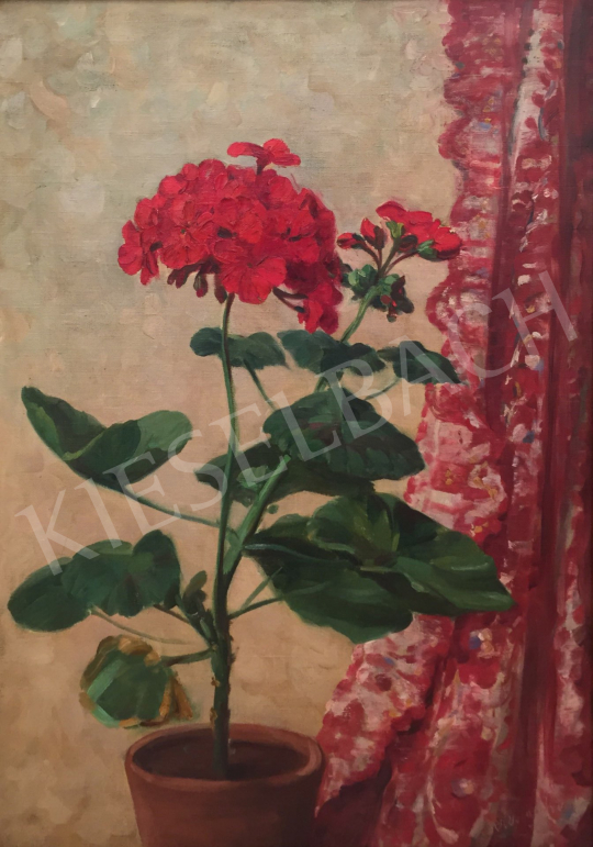 For sale Ferenczy, József - Geraniums 's painting