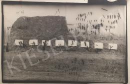 Bukta Imre - Alkalmi kiállítás a majorságban tartott állatoknak (1974)