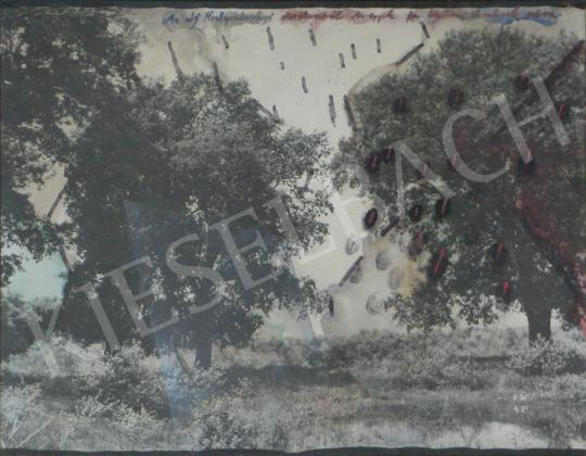 Bukta Imre - Egyik fa terem, a másik nem festménye
