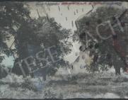 Bukta Imre - Egyik fa terem, a másik nem