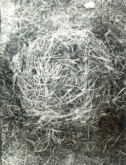 Bukta, Imre - Nest with small scythes (1974)
