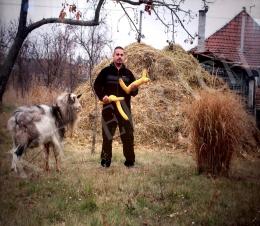 Bukta Imre - GM kukorica (2011)