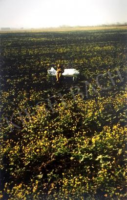 Bukta, Imre - Colzahouse (1974)