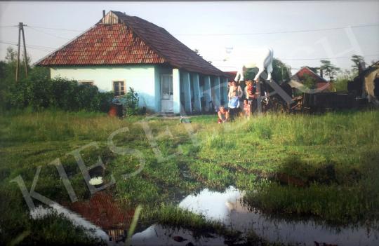 Bukta Imre - Utolsó falusi tehén festménye