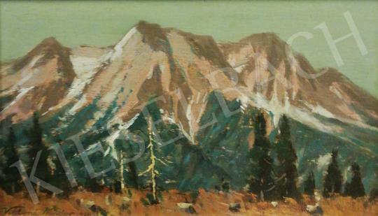For sale Katona, Nándor - View of the Tatra Mountains, 1930 's painting
