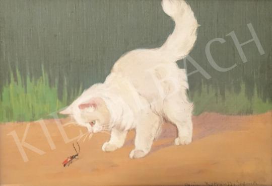 Eladó Rainerné Istvánffy Gabriella - Fehér perzsamacska festménye