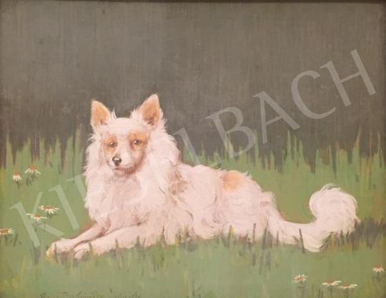 For sale Rainerné-Istvánffy, Gabriella - The Pet 's painting