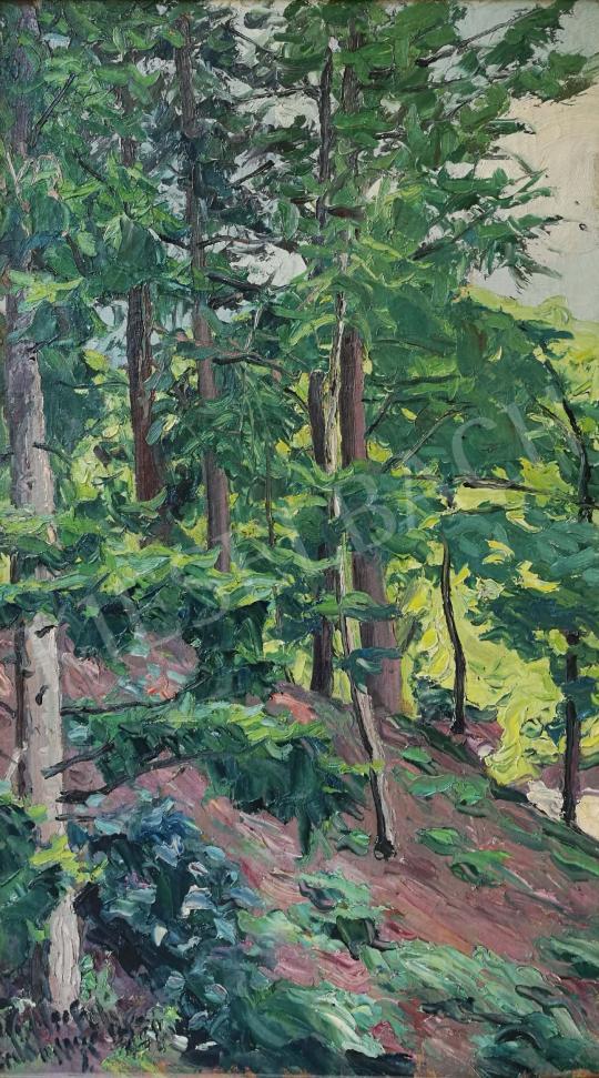 Eladó Widder Félix - A hegyekben festménye