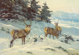 Sovánka, Károly - Deer at the High Tatras in Winter