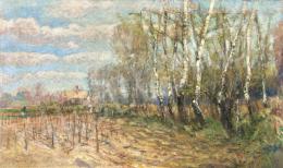 Ujváry Ignác - Nyírfaliget, 1908