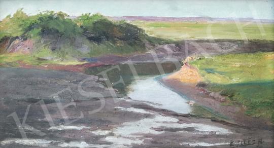 Eladó  Edvi Illés Aladár - Nyári patakpart festménye