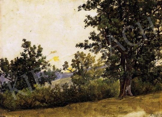 Ligeti Antal - Erdőrészlet | 13. Aukció aukció / 26 tétel