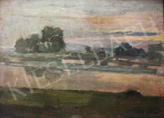 Eladó Török Jenő - Naplemente a folyóparton festménye