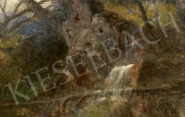 Telepy Károly - Forrás az erdőben