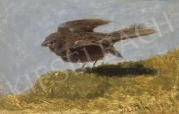 Mészöly Géza - A kicsi veréb, 1873