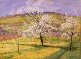 Szlányi Lajos - Virágzó fák