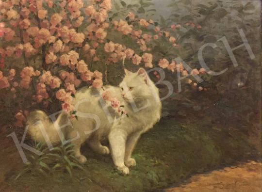 Eladó Rainerné Istvánffy Gabriella - Macska virágzó bokor előtt festménye