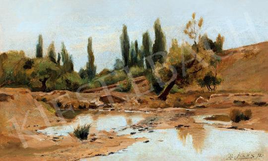 Eladó  Edvi Illés Aladár - Vízpart festménye