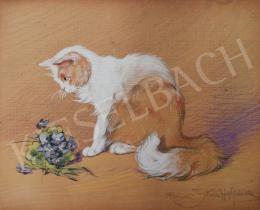 Rainerné Istvánffy Gabriella - Ibolyát szimatoló angóra cica