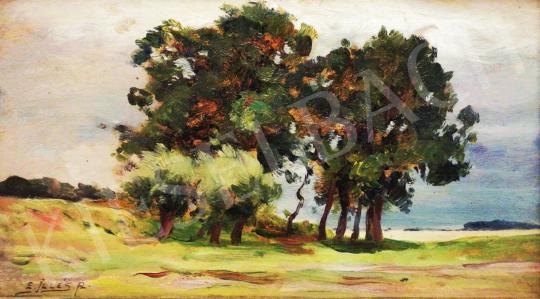 Eladó  Edvi Illés Aladár - Nyári hangulat felhőkkel festménye