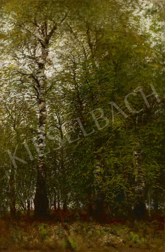 Mednyánszky László - Tavaszi nyírfaliget festménye
