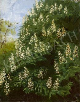Mednyánszky, László - Chestnut Tree Blossom