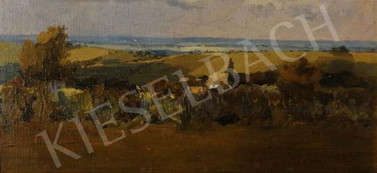 Eladó Ismeretlen festő - Nyári délután a mezőn festménye