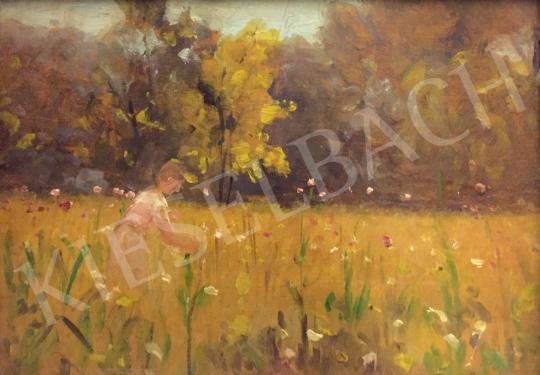 Eladó Bruck Lajos - Lány a nyári mezőn festménye