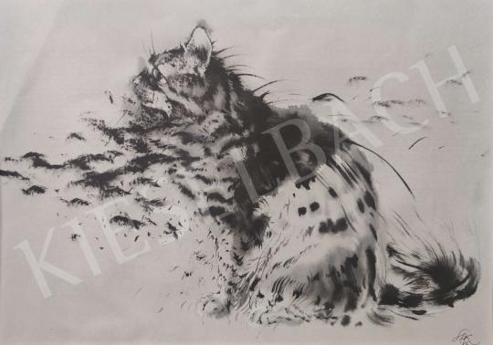 Eladó  Székely Kálmán - Figyelő macska festménye