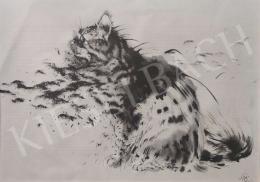 Székely Kálmán - Figyelő macska