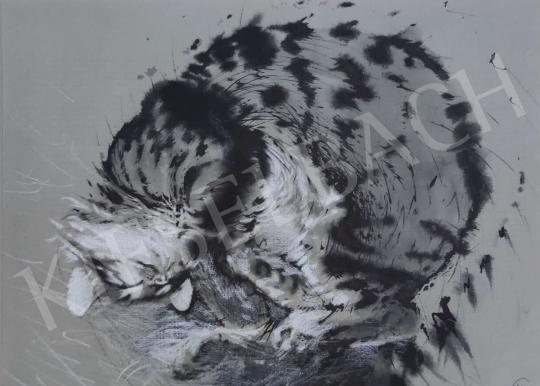For sale  Kálmán Székely - Sleeping Cat 's painting