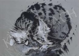 Székely Kálmán - Alvó macska