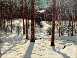 Olgyai Viktor - Tél erdő