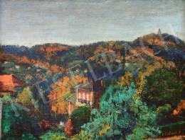 Kalmár, Anna (Kéglné) - View of Jánoshegy