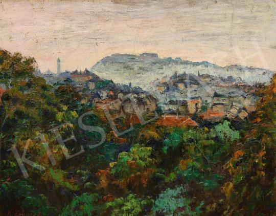 Eladó Kalmár Anna - Kilátás a Gellért-hegyről festménye