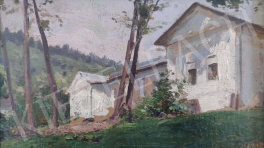 Eladó  Edvi Illés Aladár - Napfényes nemesi kúria festménye