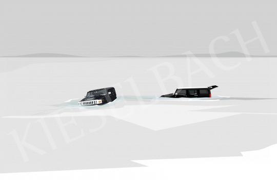 Eladó  Weiler Péter - Balatoni incidens cápaillatú autóillatosítóval, 2021 festménye