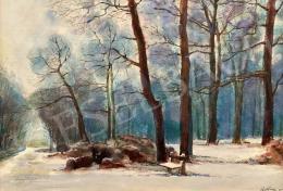 Czétényi Vilmos - Soproni városliget télen