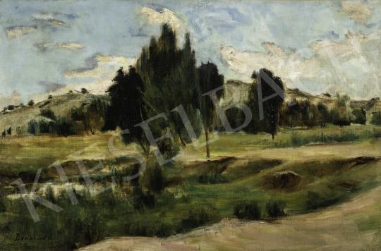 Benkhard Ágost - Felsőbányai táj bárányfelhőkkel festménye