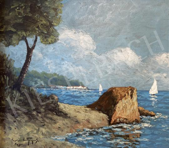 Eladó  Vasvári Wertheimer Sándor  - Capri  festménye