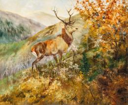 Sovánka Károly - Szarvas az őszi Tátrában